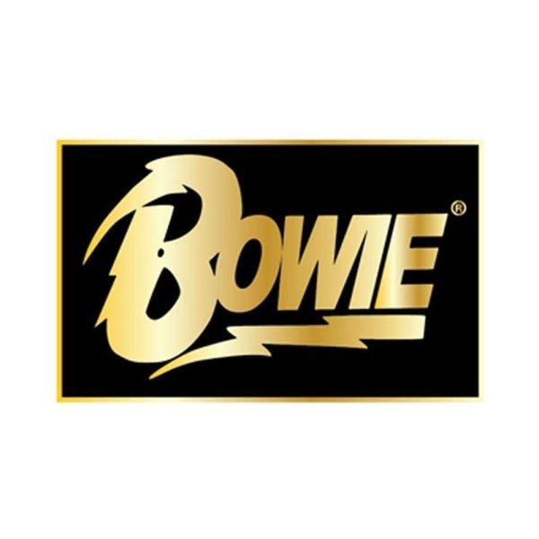画像1: David Bowie ピンバッジ デヴィッド・ボウイ Rect Logo Lapel Pin (1)