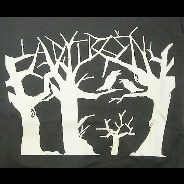 画像1: Ladytron - Crows (GM)<セール特価商品> (1)
